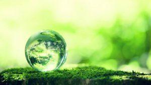 Grønn verden